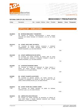 presupuesto detallado pdf