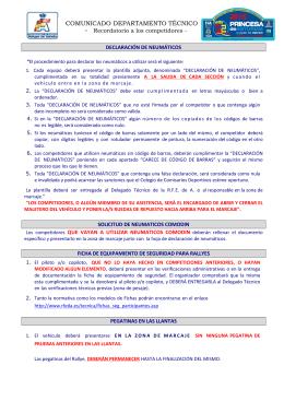 Normativa de control de neumáticos (fichero pdf)