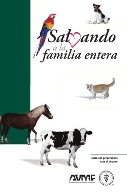 Saving the Whole Family (Spanish)