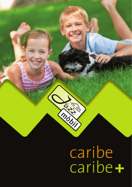 Catálogo - MobilBages