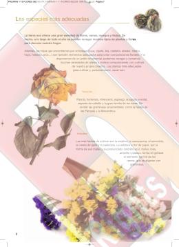 PAGINAS 1-11 FLORES SECAS