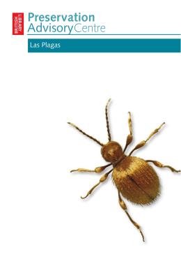 Manejo de las plagas en colecciones con soportes