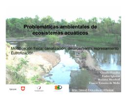 Problemáticas ambientales de ecosistemas acuáticos