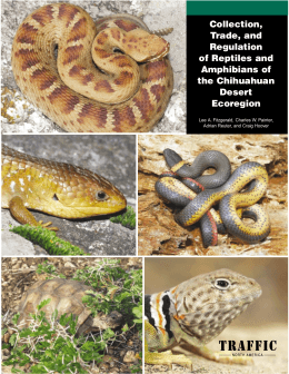 Collection, Trade, and Regulation of Reptiles and Amphibians of the