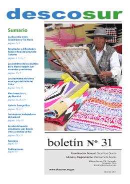 Boletin 31