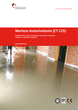 Mortero Autonivelante (CT C25)
