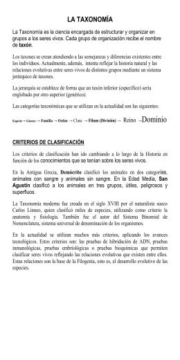 División - Colegio Hispano Americano