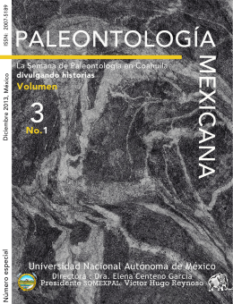 Descarga (PDF 18.1 MB) - Instituto de Geología