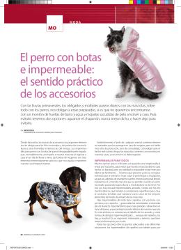 El perro con botas e impermeable: el sentido