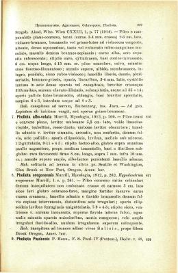 Stzgsb. Akad. Wiss. Wien CXXIII, 1, p. 77 (1914). — Pileo e cam