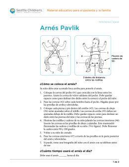 PE409S Pavlik Harness-Spanish