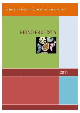 REINO PROTISTA - Institución Juan V Padilla