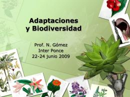 Adaptaciones y Biodiversidad