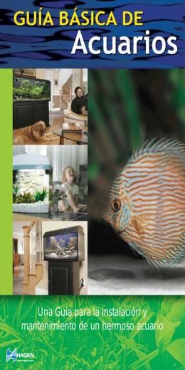 Una Guia para la instalación y mantenimiento de un hermoso acuario