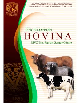 Enciclopedia Bovina - FMVZ-UNAM