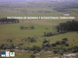 campos del uruguay