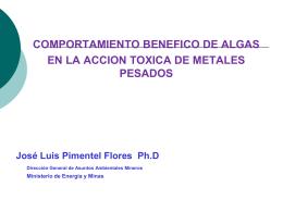 Ph. D. José Luis Pimentel