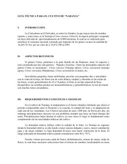 """GUÍA TÉCNICA PARA EL CULTIVO DE """"NARANJA"""" I"""