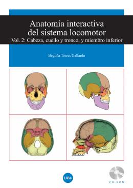 Anatomía interactiva del sistema locomotor
