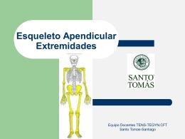 Esqueleto Apendicular Extremidades
