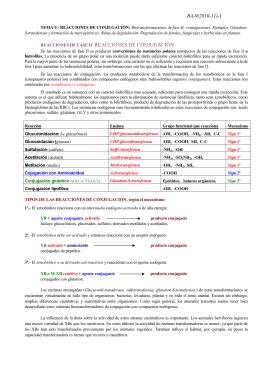 ba-9(2010-11)-1 reacciones de fase ii: reacciones de conjugación