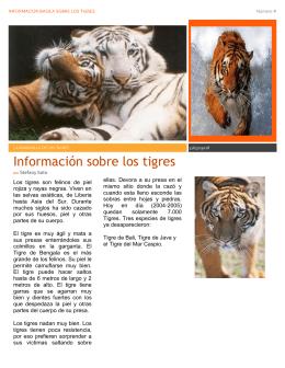 Información sobre los tigres