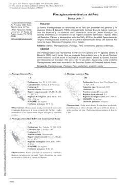 Plantaginaceae endémicas del Perú