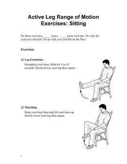Active Leg Range of Motion Exercises: Sitting - Spanish