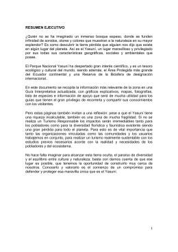 RESUMEN EJECUTIVO - Ministerio del Ambiente