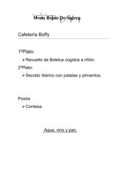 Descarga en formato PDF