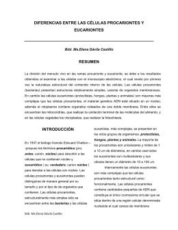 DIFERENCIAS ENTRE LAS CÉLULAS PROCARIONTES Y