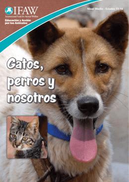 Gatos, perros y nosotros