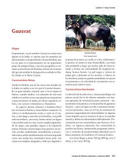 Enciclopedia Bovina1