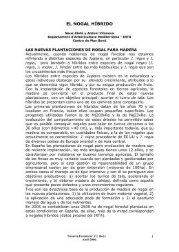 ARTÍCULO PARA DESCARGAR SOBRE NOGALES HÍBRIDOS
