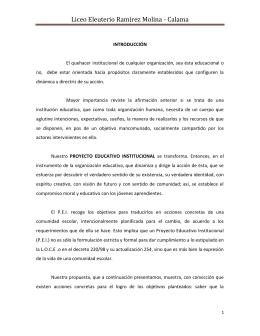 Liceo Eleuterio Ramírez Molina - Calama
