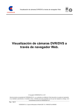Visualización de cámaras DVR-DVS a través de navegador Web