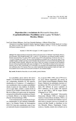 Reproducción y crecimiento de Heterandria bimaculata