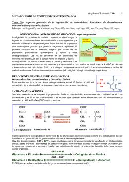 transaminacion, desaminacion y descarboxilacion