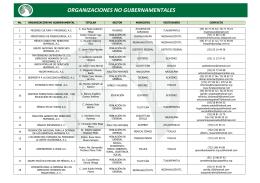 Organizaciones No Gubernamentales (ONG)