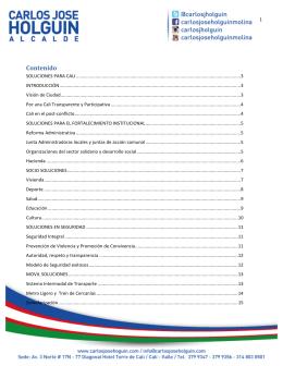 Ver plan de gobierno - Carlos Jose Holguin