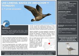 LAS LANDAS, BAHÍA DE ARCACHON Y TXINGUDI