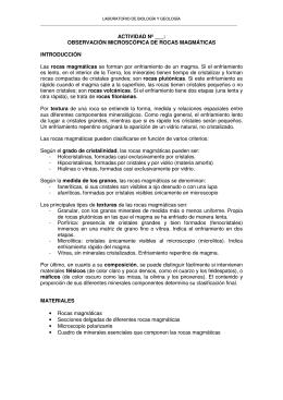 ACTIVIDAD Nº ___: OBSERVACIÓN MICROSCÓPICA DE ROCAS