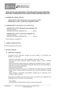 FICHA TÉCNICA DE AMOXICILINA CINFA 500 mg