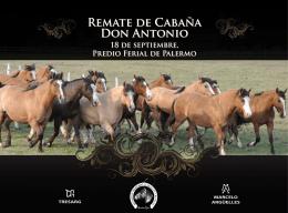 REMATE dE CAbAñA DON ANTONiO