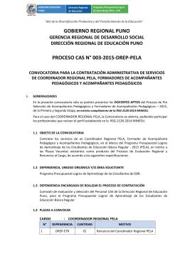 GOBIERNO REGIONAL PUNO PROCESO CAS N° 003-2015