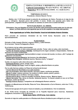 PLAZA NUEVA - EL ARENAL 2012