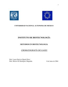 INSTITUTO DE BIOTECNOLOGÍA CROMATOGRAFÍA DE GASES