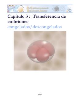 Capítulo 3 : Transferencia de embriones congelados/descongelados