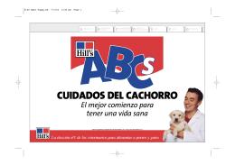 CUIDADOS DEL CACHORRO - clinica veterinaria arganzuela