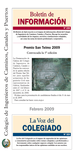 Boletin FEBRero08 - Colegio de Ingenieros de Caminos, Canales y